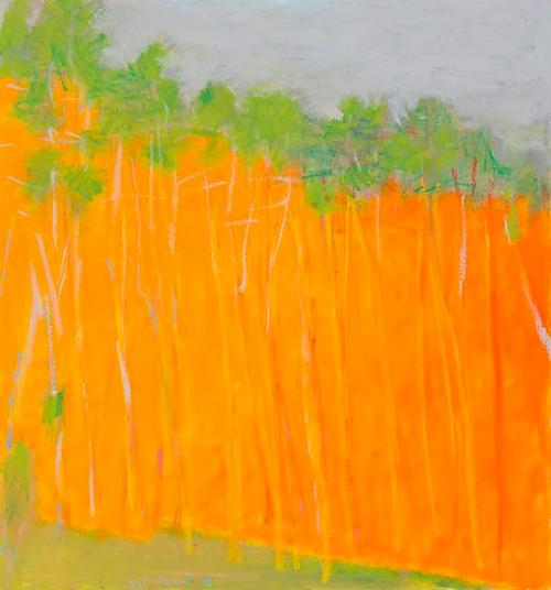 wolf kahn ~ bold color, 2011