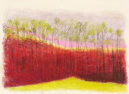 wolf kahn ~ red ridge, 2013
